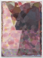 41_rose-aftervuillard.jpg